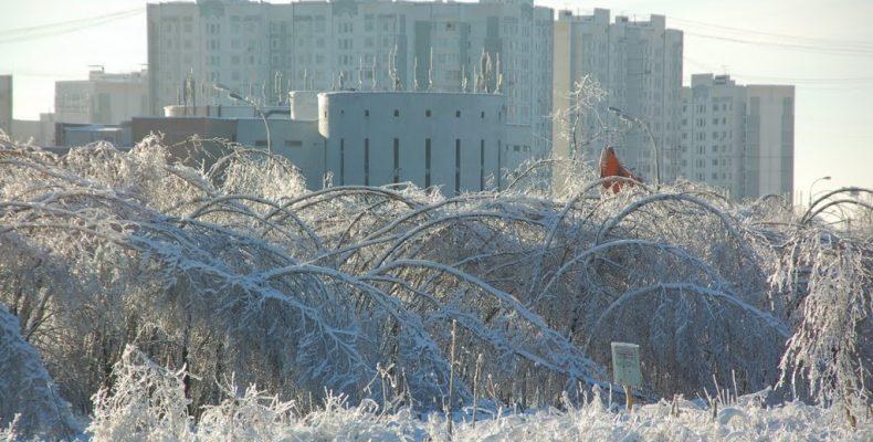 В районе Северное Бутово все жилые дома к зиме готовы