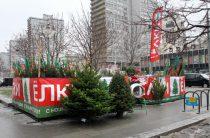 В Северном Бутово открылись елочные базары