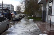 Сплошная обработка специализированными средствами состоялась на территории района Северное Бутово