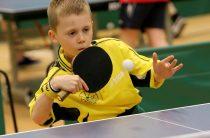 В Центре «Спорт-Бутово» идёт подготовка к соревнованиям сразу по трём видам спорта
